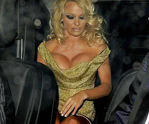 Category: pamela anderson
